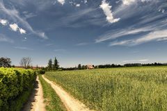 Country landscape in Brianza (Italy) Stock Image