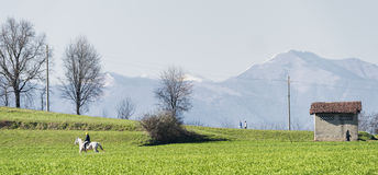 Country landscape in Brianza Royalty Free Stock Images