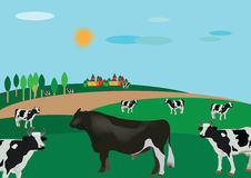 Country landscape with cattle. In the wild with cows and a bull Royalty Free Stock Photo