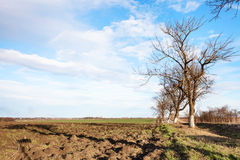 Country landscape in early spring day Royalty Free Stock Photo