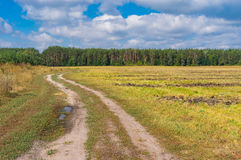 Country landscape with earth road to forest Stock Photography