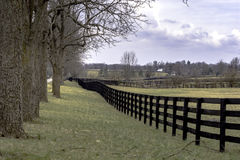 Country landscape with fenceline and trees. Viewed in perspective Royalty Free Stock Photography