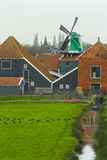 Country landscape with grazing coot bird flock at traditional Dutch windmill and farm house background Royalty Free Stock Photos
