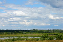 Country landscape. Green Country landscape with river Stock Photography