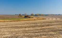Country landscape with harvested field Royalty Free Stock Photos