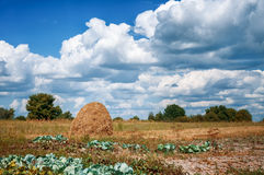 Country landscape with a haystack. And the blue sky with magnificent clouds Royalty Free Stock Images