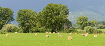 Country landscape in Lazio (Italy) Royalty Free Stock Photo