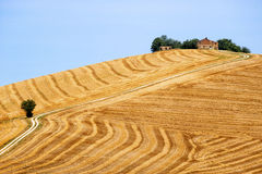 Country landscape in Marches (Italy) Royalty Free Stock Images
