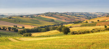 Country landscape in Marches (Italy) Royalty Free Stock Photos