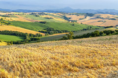 Country landscape in Marches (Italy) Stock Photos