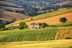 Country landscape in Marches (Italy) Stock Images
