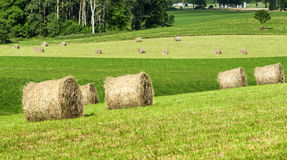 Country landscape in Midi-Pyrenees (France) Royalty Free Stock Photos