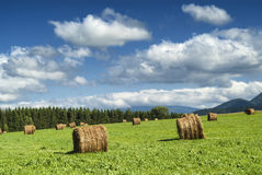 Country landscape in Midi-Pyrenees (France) Stock Photo