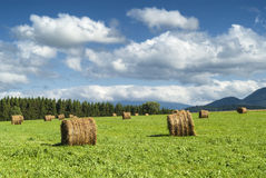 Country landscape in Midi-Pyrenees (France) Royalty Free Stock Photo