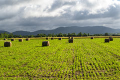 Country landscape in Midi-Pyrenees (France) Stock Photos
