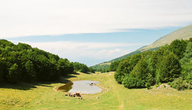 Country landscape in Monte Baldo mountains Royalty Free Stock Photography