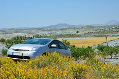 Country landscape of Murcia in spring Stock Photo