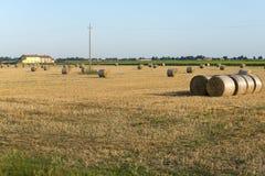 Country landscape near Ferrara (Italy) Royalty Free Stock Photography