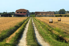 Country landscape near Ferrara (Italy) Royalty Free Stock Images