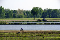 Country landscape near Pavia Italy Royalty Free Stock Images