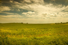 Country landscape. Royalty Free Stock Images