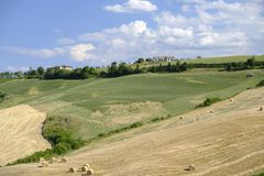 Landscape in Romagna at summer: fields Royalty Free Stock Photography