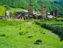 Country landscape in Svaneti. Country landscape in Ushguli, Svaneti, Georgia Royalty Free Stock Photos