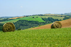 Country landscape in Tarn (France) Royalty Free Stock Images