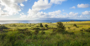 Country Landscape on Tropical Island. Afternoon sun on countryside of Maui overlooking the ocean Stock Photos