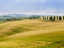 Country landscape in the Tuscan hills Stock Photo