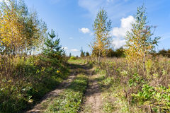 Country landscape in warm and sunny autumn day Stock Photography