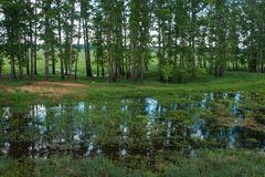 Country landscape whith reflection in the river, Bogolubovo, Rus Stock Photo