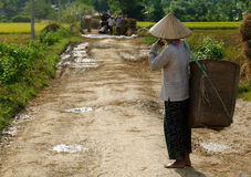 Country landscapes in Vietnam Stock Photography