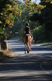 Country Lane. Horse Riding in country lane, Noordhoek, cape Town Stock Images
