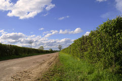 Country Lane. A country lane leading into the distance in springtime Stock Photo