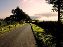 Country lane Stock Images