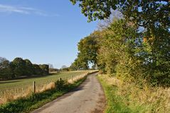 Country Lane Royalty Free Stock Photos
