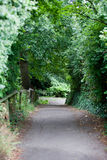 Country Lane in British Countryside Stock Photo