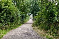 Country Lane in British Countryside Royalty Free Stock Photos
