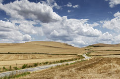 Country lane Stock Photography