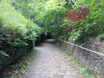 Country lane descending a steep hill Stock Image