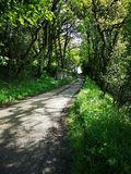 Country Lane fifr stock images
