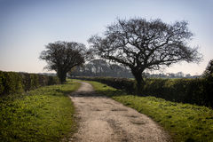 Country Lane Landican Wirral stock images