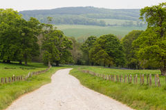 Country Lane Leading Through Green Meadow in Ireland Royalty Free Stock Photos