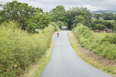 A country lane Stock Photos