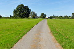 Country Lane. Narrow Country Lane through Farmland Stock Image