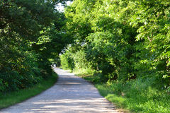 Country lane. A narrow country lane, with trees and greenery, curves out of sight Stock Photos
