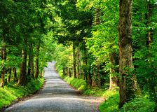 Country Lane. Sparks Lane at Cades Cove in the Great Smoky Mountains, Tennessee, USA Stock Photos