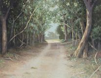 A country lane of sun-dappled tall trees arched in the shade - Original Original oil painting on canvas -. A country lane of sun-dappled tall trees arched in the Stock Photography