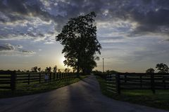 Country lane at sunset stock photo